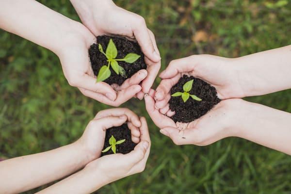 Eco-friendly: как стать экологичнее