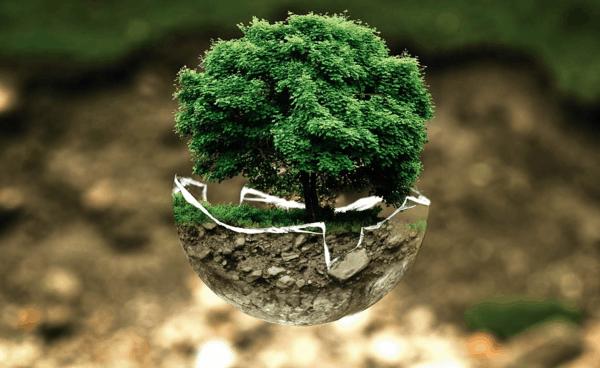 Эко-привычки: как спасти нашу планету