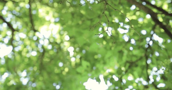 Как справиться с беспокойством: как не позволять страху управлять вами
