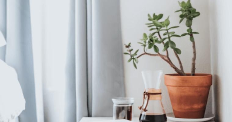4 совета для чистого дома